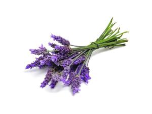 Lavender-Slider
